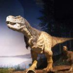 ◆ミュージアムパーク:茨城県自然博物館がなにげにスゴイ件;('∀')